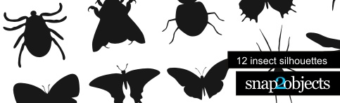 header insects